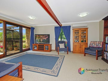 14 Seppelt Close, Eleebana, NSW 2282
