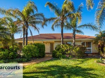 14 Lantana Drive, Parafield Gardens, SA 5107