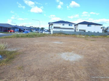 Lot 1002, 48 Water Gum Road, Gregory Hills, NSW 2557
