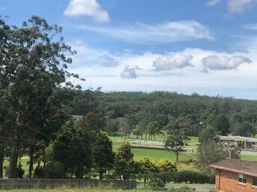 20 Silky Oak Rise, Kew, NSW 2439