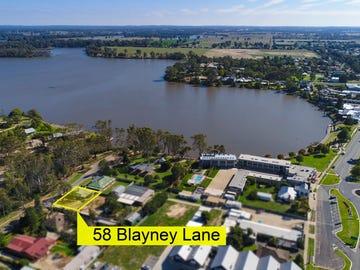 Lot 1, 58 Blayney Lane, Nagambie, Vic 3608