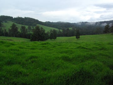 Lot 12 Schultz Road, Billys Creek, NSW 2453