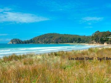 657 Beach Road, Surf Beach, NSW 2536