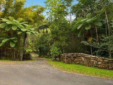 497 Mount Warning Road,, Mount Warning, NSW 2484