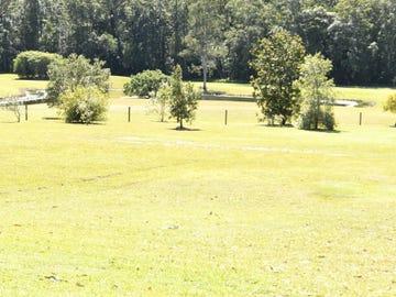 31A Meadow Ct, Doonan, Qld 4562