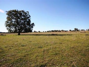 635 Castlereagh Highway, Gulgong, NSW 2852