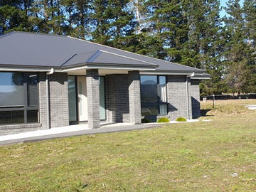 10136 Tasman Highway, Little Swanport, Tas 7190