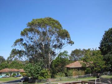 2/17 The Parade, Telopea, NSW 2117