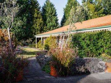 83 Atkinsons Road, Grindelwald, Tas 7277