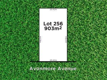 44 Avonmore Avenue, Trinity Gardens, SA 5068