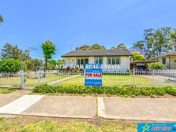 113 Ellsworth Drive, Tregear, NSW 2770