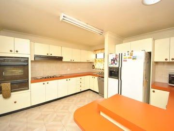 58 Weemala Street, Chester Hill, NSW 2162