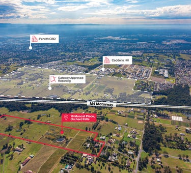 16 Muscat Place, Orchard Hills, NSW 2748