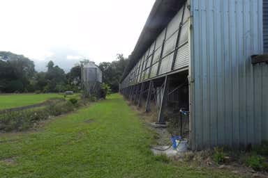 412 Kamerunga Road Stratford QLD 4870 - Image 4