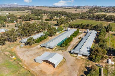 2  Farms Lockwood South VIC 3551 - Image 2