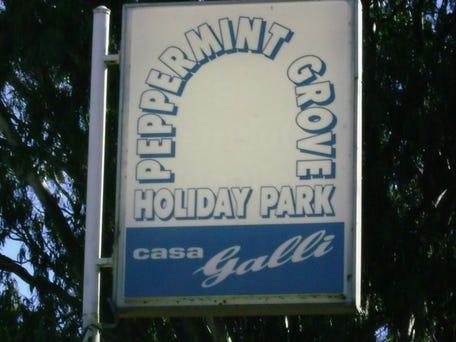 48 Peppermint Grove Road, Capel, WA 6271