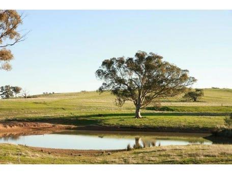 Hughstonia Road, Binalong, NSW 2584