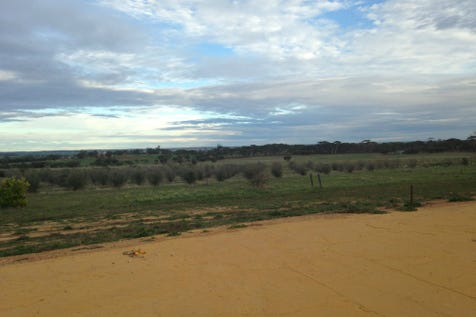 78 York Gum Drive, Goomalling, 6460, East - Residential Land / Amazing Views ready for your Dream Home / $255