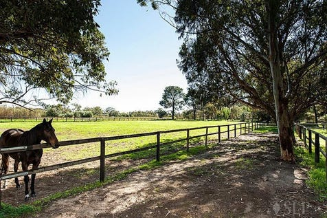 256 Haddrill Road, Baskerville, 6056, North East Perth - House / 15 Acres & 2 Houses / Garage: 4 / $1,550,000