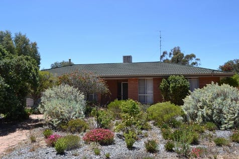 40 Moore St, Kellerberrin, 6410, East - House / Space, Size and Substance / $299,000