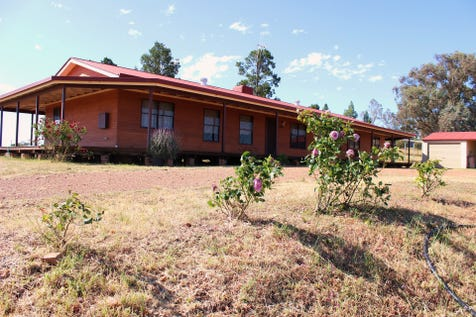 153 Cons Lane, Parkes, 2870, Central Tablelands - Acreage/semi-rural / Family home on 10 acres with relaxing views in every direction. / Fully Fenced / Carport: 2 / Garage: 1 / Air Conditioning / Built-in Wardrobes / Open Fireplace / Study / Ensuite: 1 / $447,500