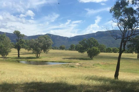 L12 Genowlan Road, Rylstone, 2849, Central Tablelands - Farmlet / TOP END VIEWS OF CAPERTEE VALLEY / $375,000