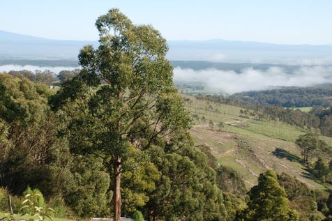 2 Goola Way, Willung South, 3847, Gippsland - House / What a view / Garage: 4 / Built-in Wardrobes / Split-system Air Conditioning / $393,000