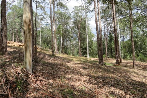 650 Yarramalong Road, Wyong Creek, 2259, Central Coast - Residential Land / RARE FIND!! Small acreage in the beautiful, peaceful Yarramalong Valley. / P.O.A