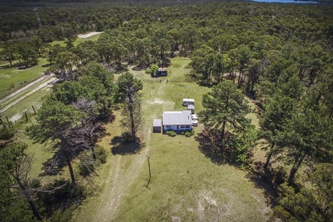 305 Summerhayes Road, Wyee, 2259, Central Coast - Lifestyle / Cute Cottage On On 40 Acres... / Shed / Carport: 1 / Air Conditioning / $729,000