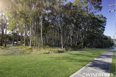 62 Government Road, Wyee Point, 2259, Central Coast - Residential Land / Surrounded by Serenity! / $260,000