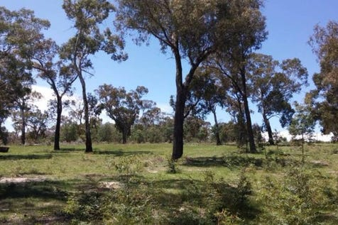 256 mount haven way, Meadow Flat, 2795, Central Tablelands - Residential Land / Meadow Flat Acreage *Reduced! / $249,000