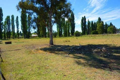 Lots 18, 19 & 20, Lots 18, 19 & 20 Thistle Street, Molong, 2866, Central Tablelands - Residential Land / Building Block - Excellent Location / $160,000