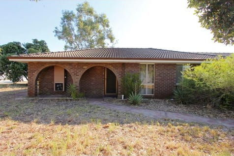 25A Forder Road, Noranda, 6062, North East Perth - Duplex/semi-detached / SOME PEOPLE LOOK FOR A BEAUTIFUL PLACE, OTHERS MAKE A PLACE BEAUTIFUL. / Carport: 1 / Air Conditioning / P.O.A