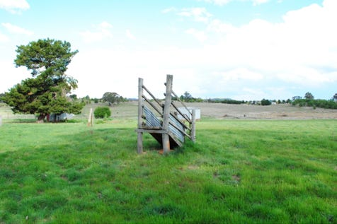 269 Forest Reefs Road, Millthorpe, 2798, Central Tablelands - Residential Land / A Rare Opportunity / $315,000
