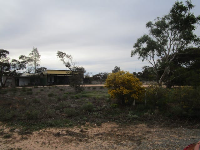 124 Caddy Road, Barmera, SA 5345