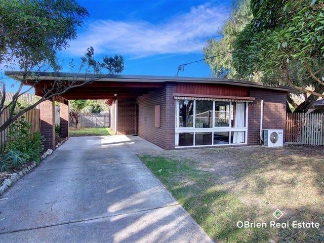 13 Cootamundra Avenue, Capel Sound, Vic 3940