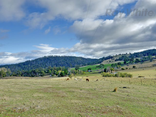 430 Black Hills Road, Black Hills, New Norfolk, Tas 7140