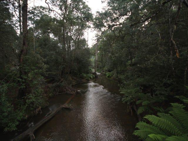 139 Bassetts Road, Calder, Tas 7325
