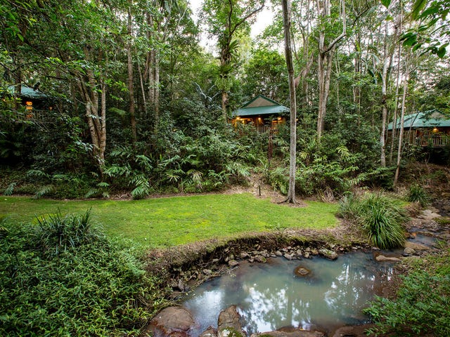 78 Narrows Road, Montville, Qld 4560
