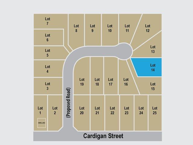 Lot 14  Cardigan Street, Renwick, NSW 2575