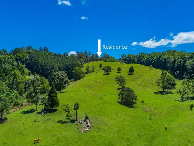124 Coopers Creek Road, Repentance Creek, NSW 2480