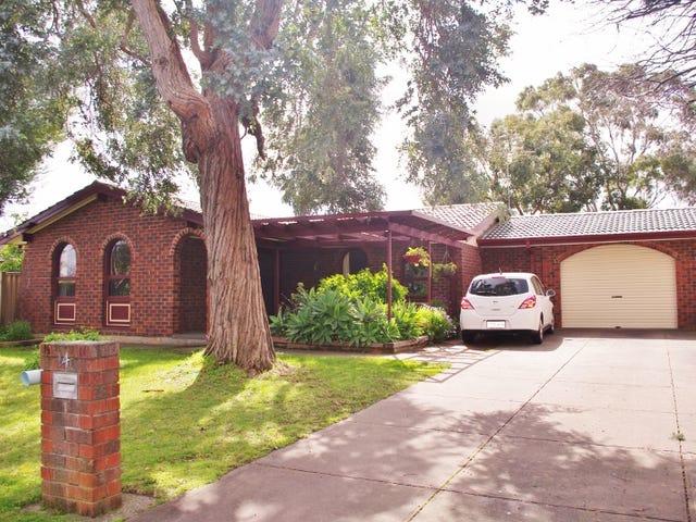 14 Nicolle Avenue, Hawthorndene, SA 5051