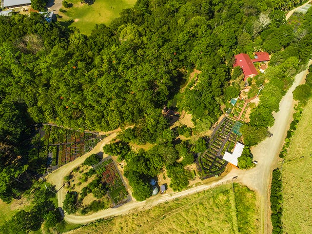 110 Yankee Creek Road, Mullumbimby Creek, NSW 2482