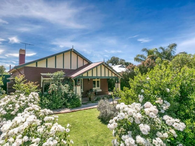 19 Springbank Road, Colonel Light Gardens, SA 5041
