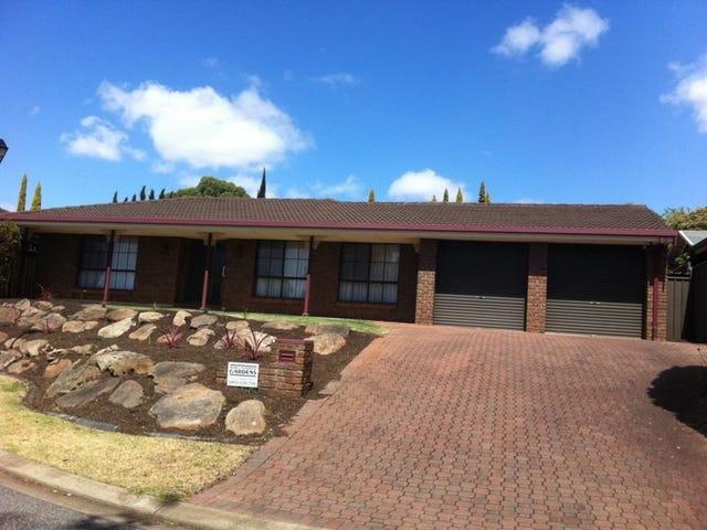13 Taranaki Court, Greenwith, SA 5125