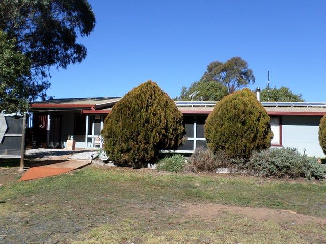 157 honeysett rd gulgong, Tallawang, NSW 2852
