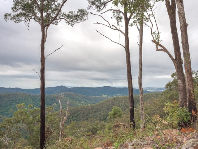 Lot 7, 106 Wongawallen Road, Tamborine Mountain, Qld 4272