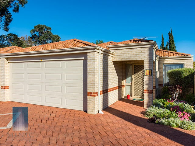 11/8 Acton Avenue, Bentley, WA 6102