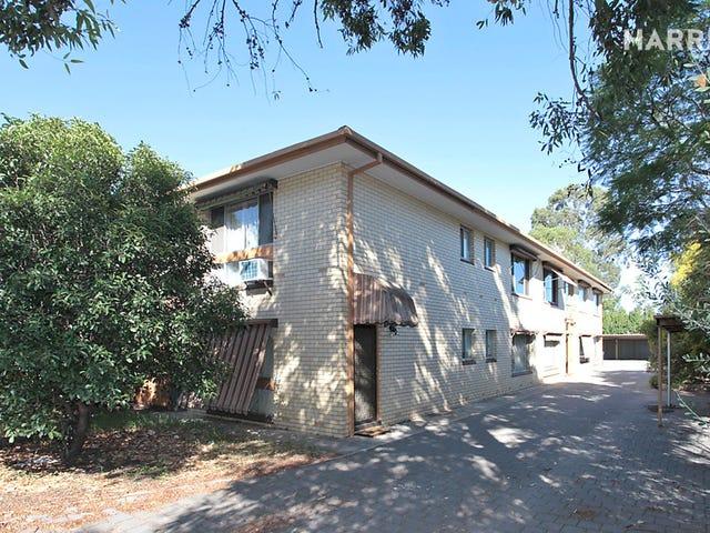 2/280 Magill Road, Beulah Park, SA 5067