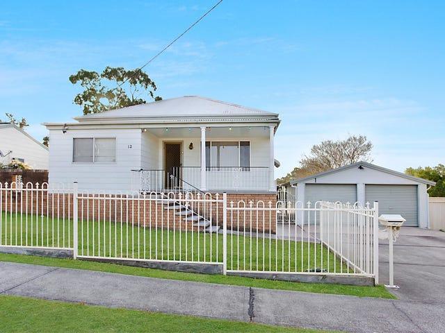 12 Allandale Street, Kearsley, NSW 2325